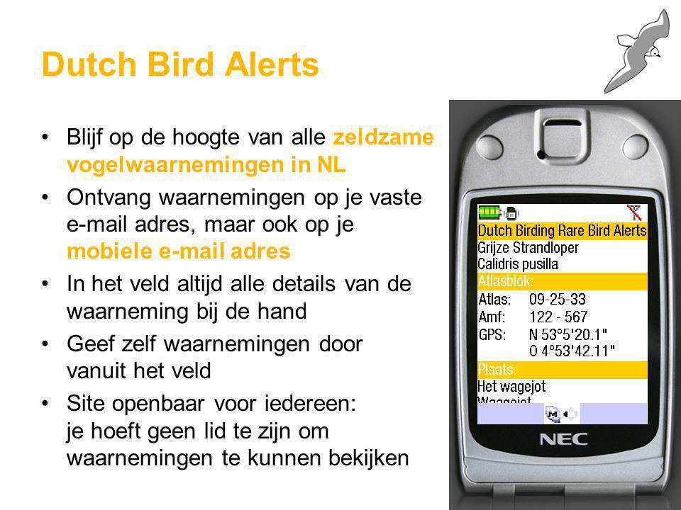 Dutch Bird Alerts Blijf op de hoogte van alle zeldzame vogelwaarnemingen in NL.