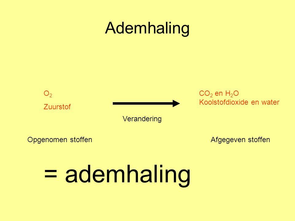 = ademhaling Ademhaling O2 Zuurstof CO2 en H2O