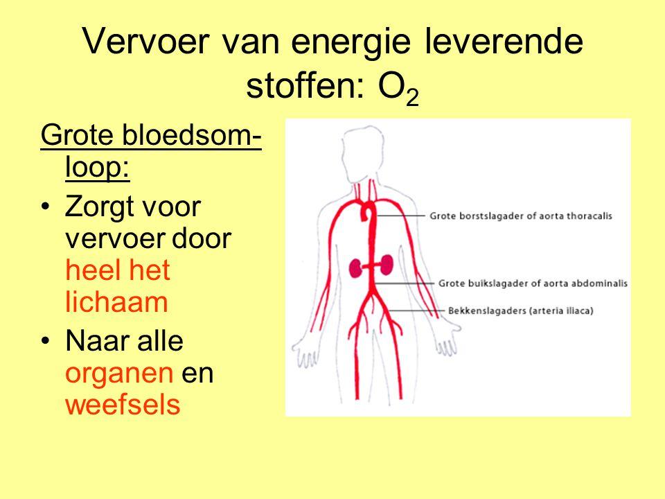 Vervoer van energie leverende stoffen: O2