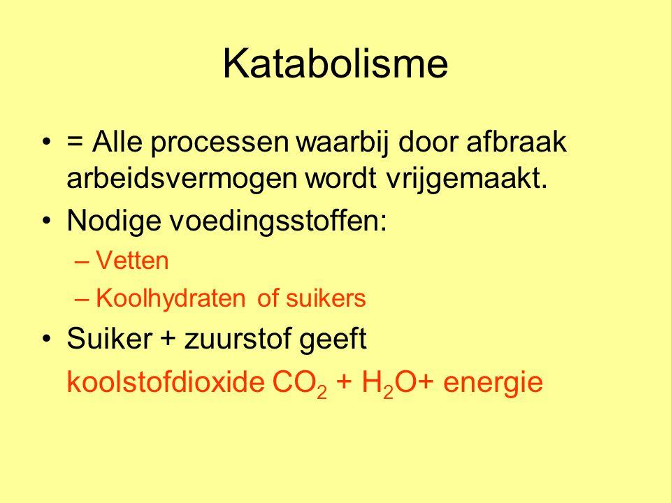 Katabolisme = Alle processen waarbij door afbraak arbeidsvermogen wordt vrijgemaakt. Nodige voedingsstoffen: