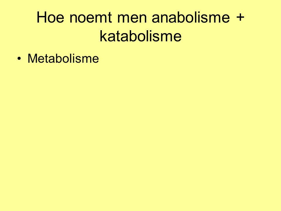 Hoe noemt men anabolisme + katabolisme