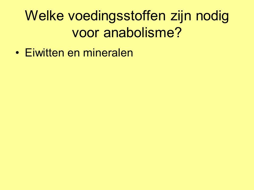 Welke voedingsstoffen zijn nodig voor anabolisme
