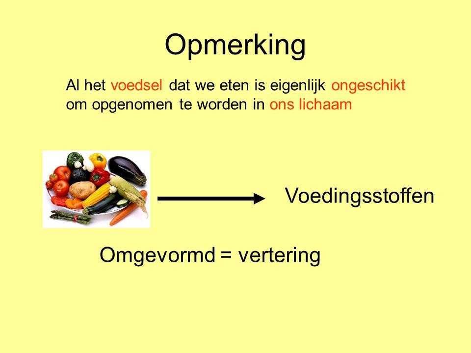 Opmerking Voedingsstoffen Omgevormd = vertering