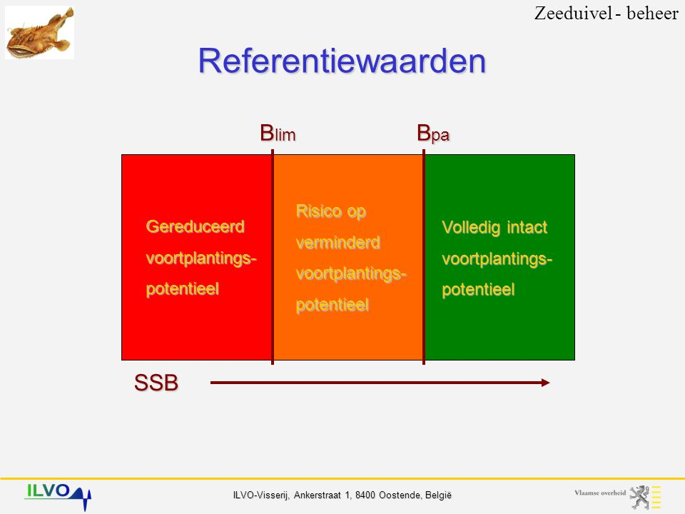 Referentiewaarden SSB Blim Bpa Zeeduivel - beheer Risico op verminderd