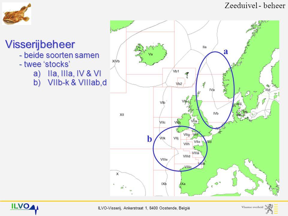 Zeeduivel - beheer Visserijbeheer - beide soorten samen - twee 'stocks' a) IIa, IIIa, IV & VI b) VIIb-k & VIIIab,d.