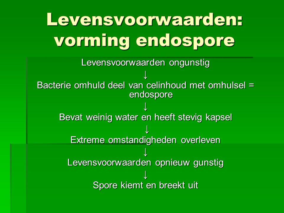Levensvoorwaarden: vorming endospore