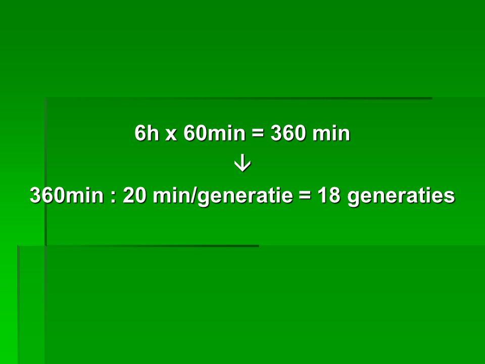 360min : 20 min/generatie = 18 generaties