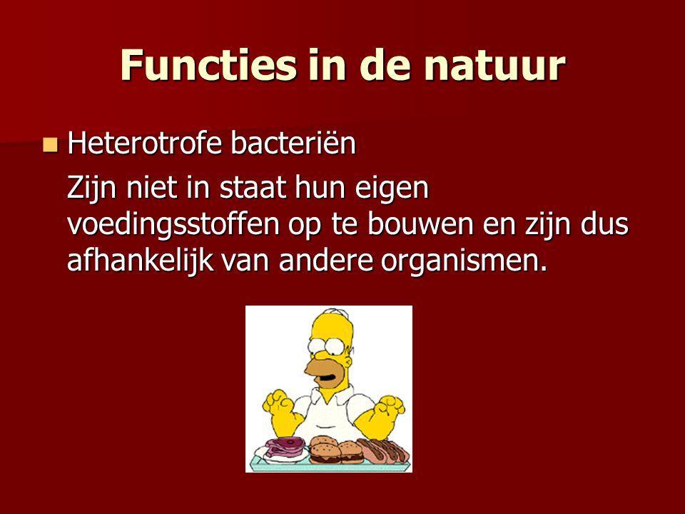 Functies in de natuur Heterotrofe bacteriën