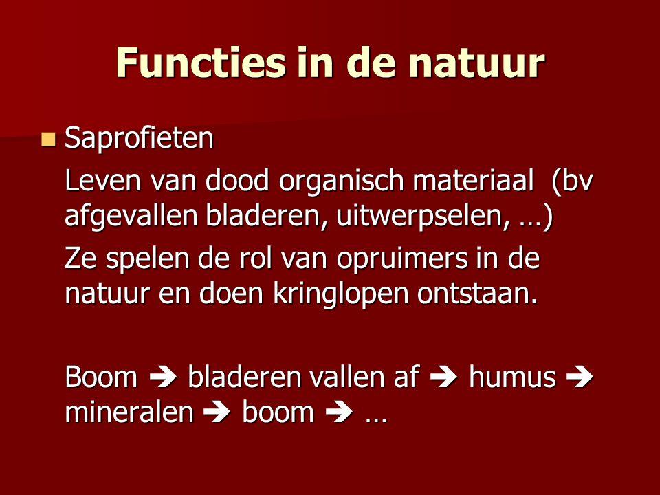 Functies in de natuur Saprofieten