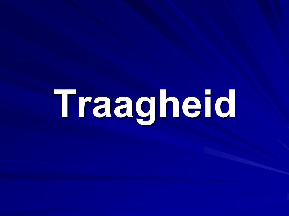 Traagheid