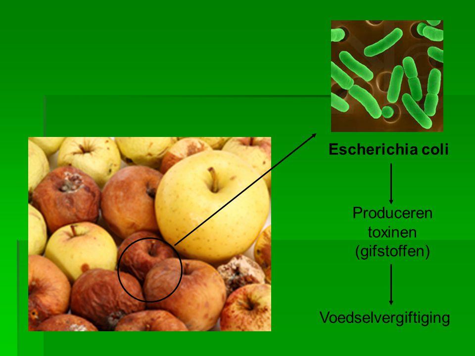 Produceren toxinen (gifstoffen)