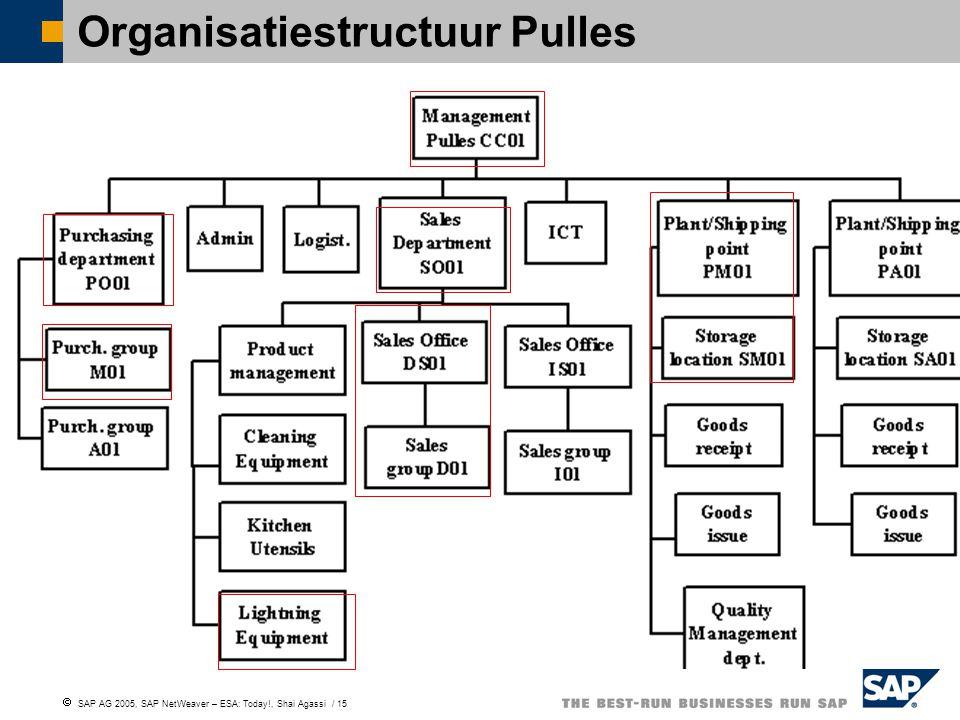 Organisatiestructuur Pulles