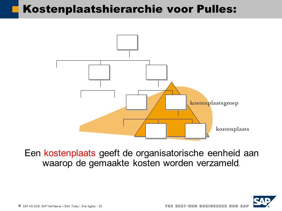 Kostenplaatshierarchie voor Pulles:
