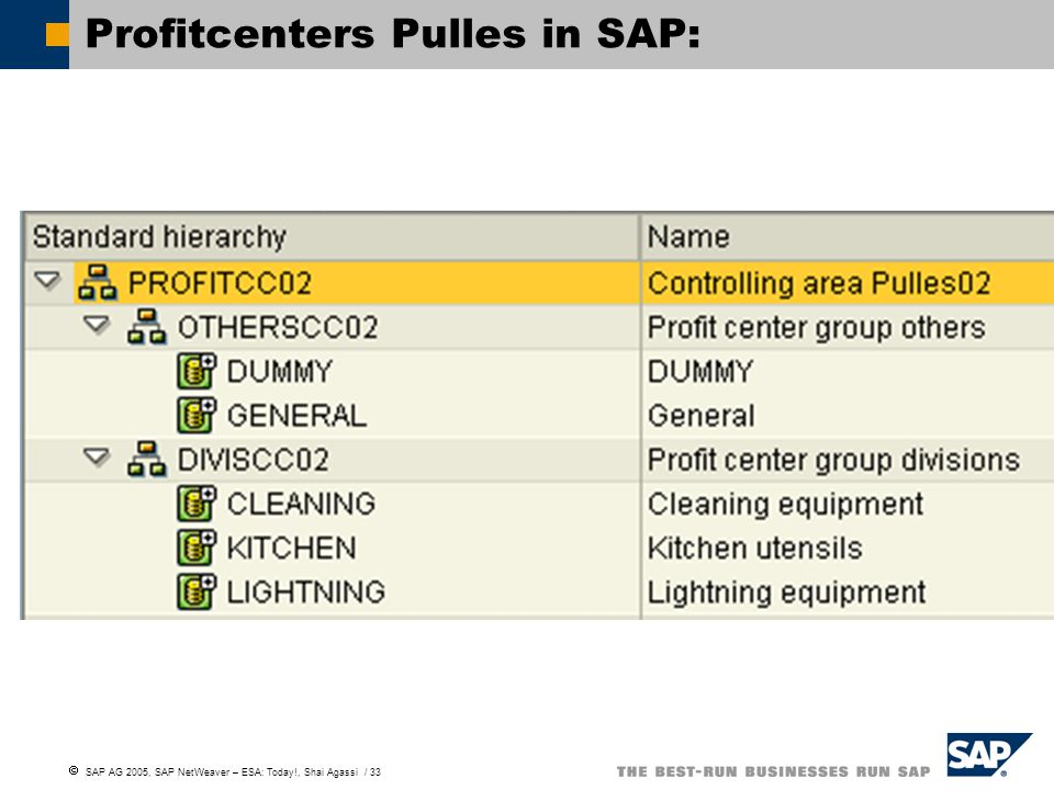 Profitcenters Pulles in SAP: