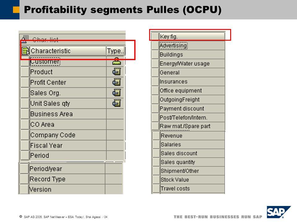 Profitability segments Pulles (OCPU)