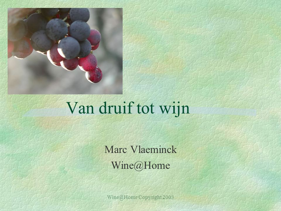 Marc Vlaeminck Wine@Home