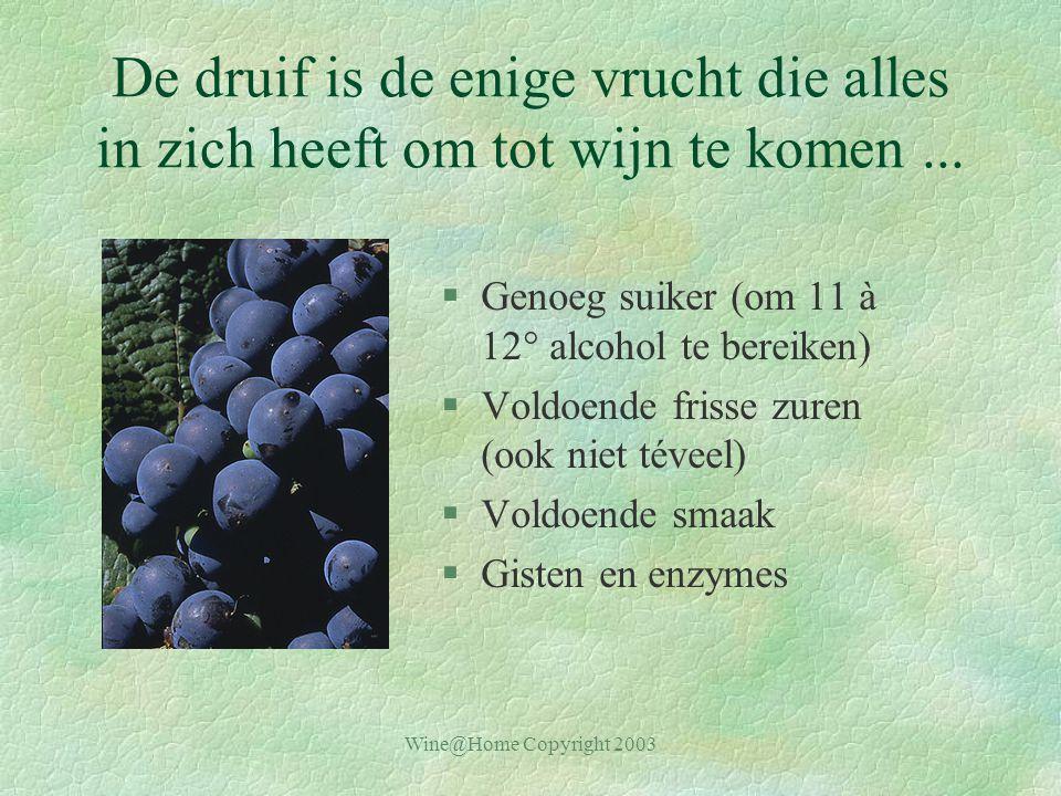 De druif is de enige vrucht die alles in zich heeft om tot wijn te komen ...