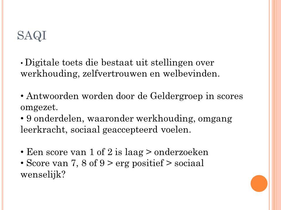 SAQI Antwoorden worden door de Geldergroep in scores omgezet.