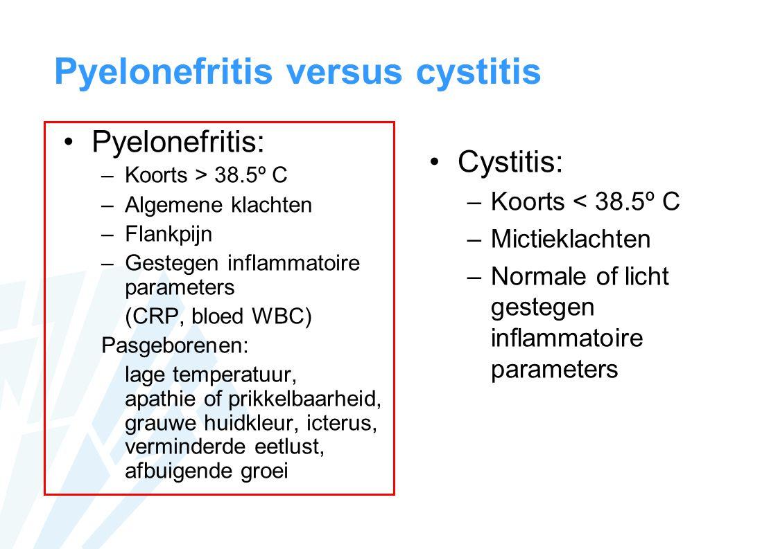 Pyelonefritis versus cystitis