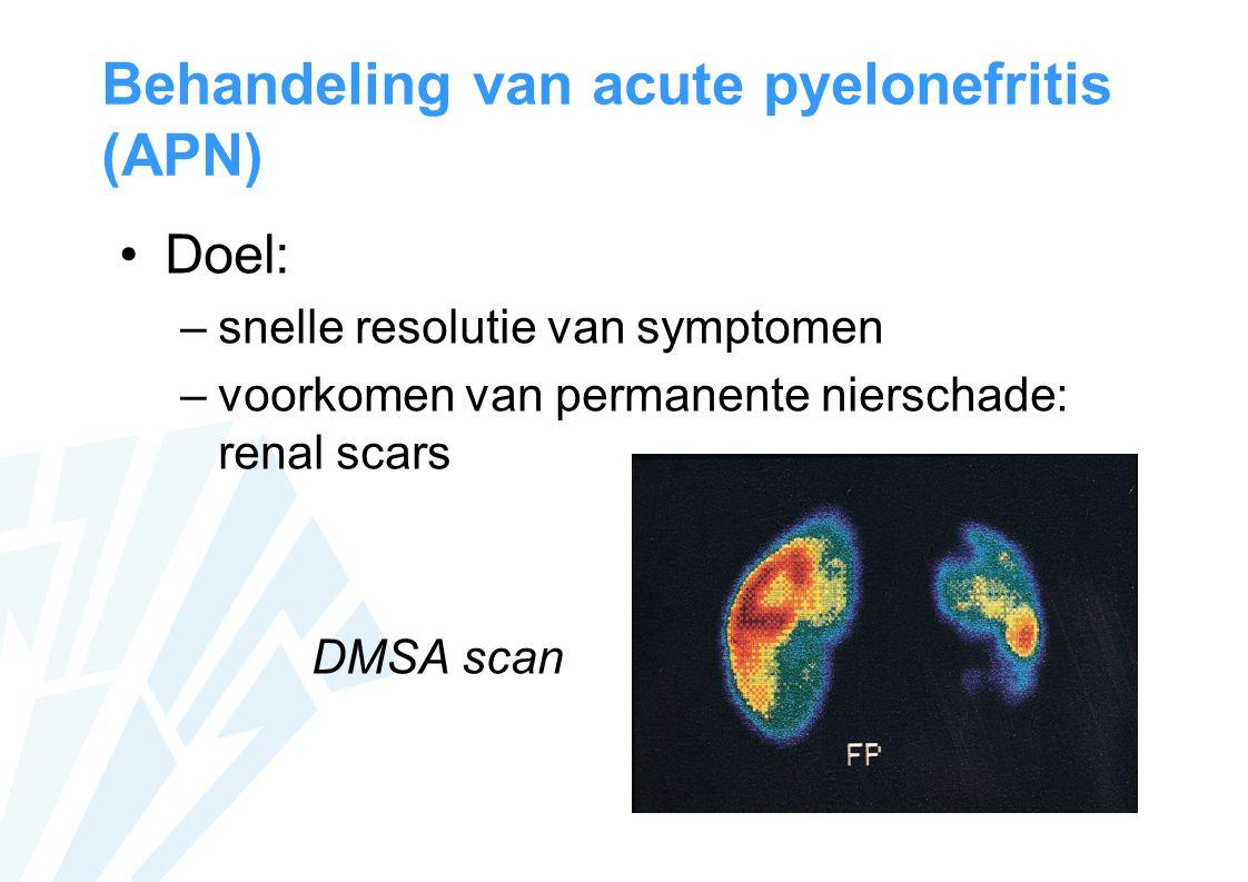 Behandeling van acute pyelonefritis (APN)