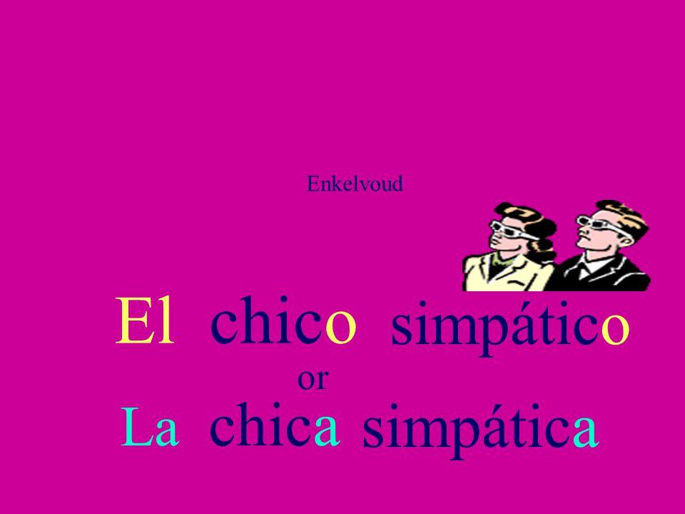 Enkelvoud El chico simpático or La chica simpática