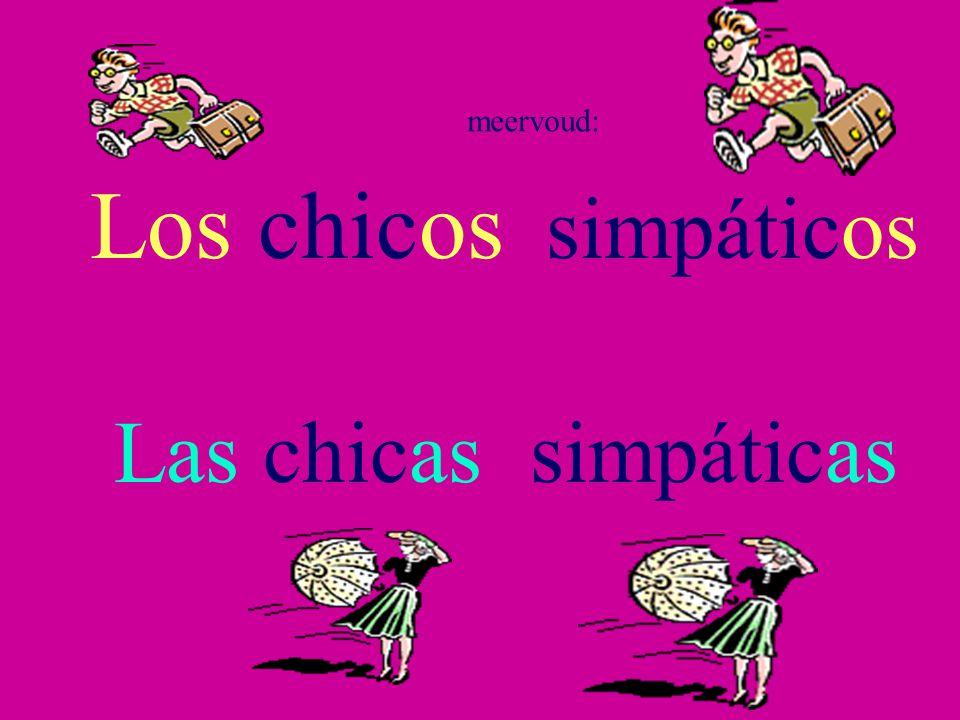 meervoud: Los chicos simpáticos Las chicas simpáticas