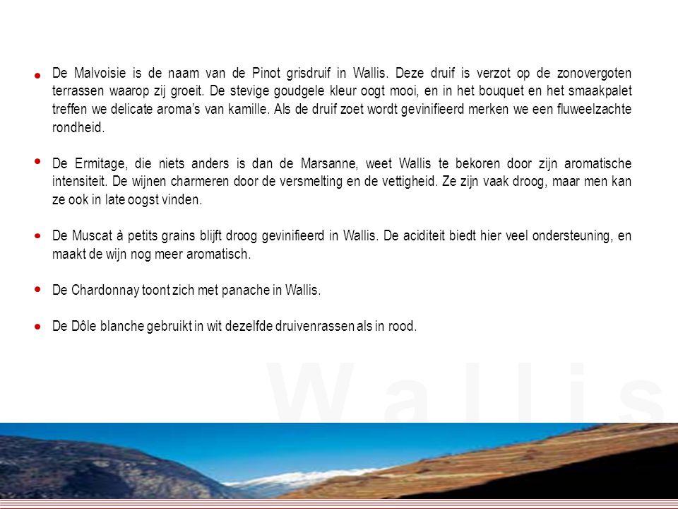 De Malvoisie is de naam van de Pinot grisdruif in Wallis