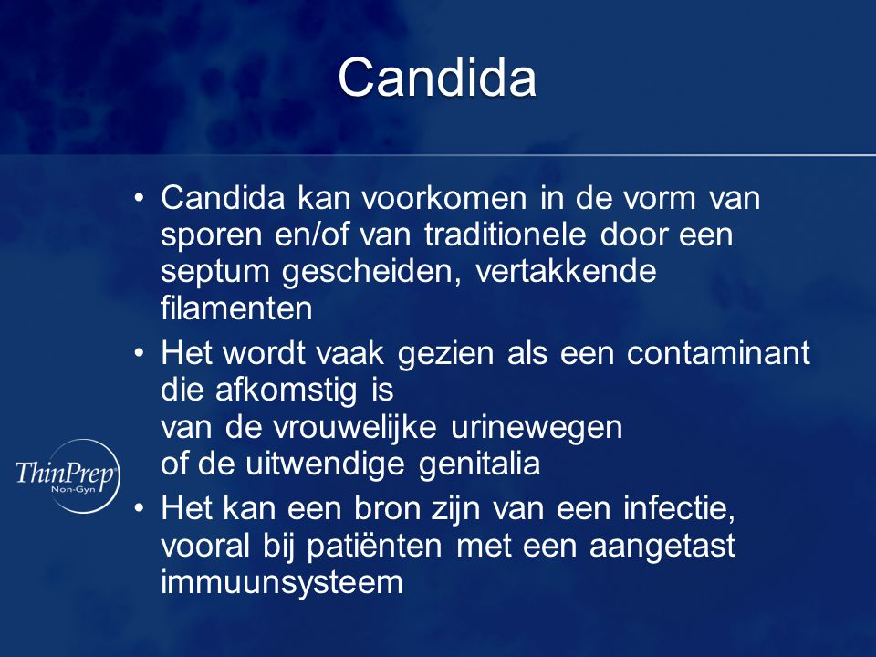 Candida Candida kan voorkomen in de vorm van sporen en/of van traditionele door een septum gescheiden, vertakkende filamenten.