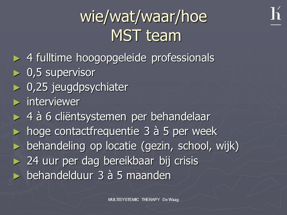 wie/wat/waar/hoe MST team