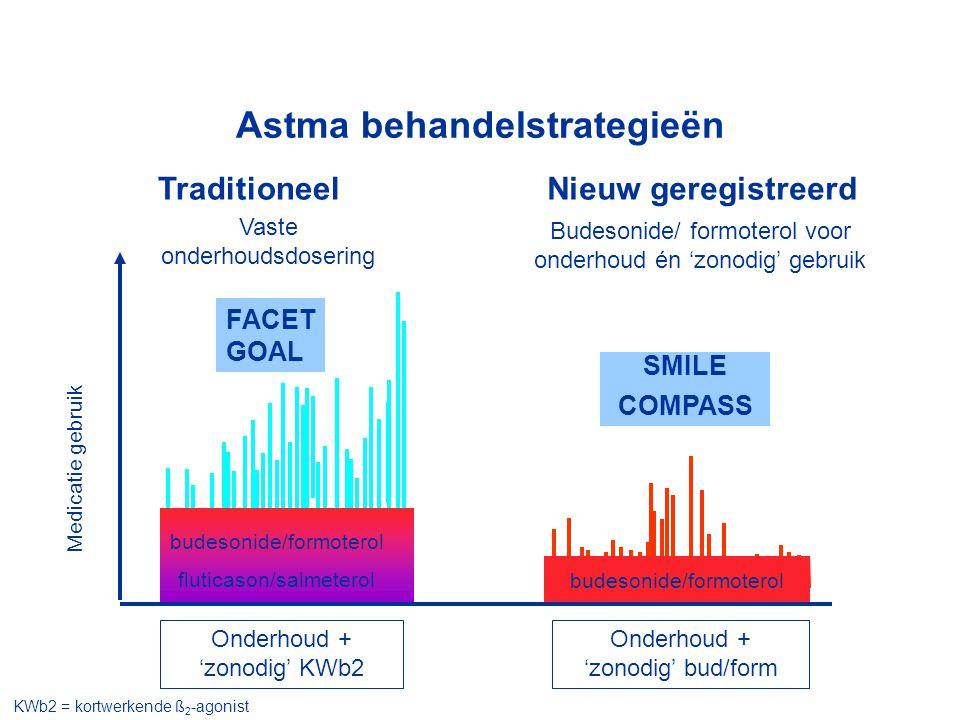 Astma behandelstrategieën