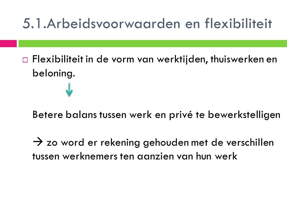 5.1.Arbeidsvoorwaarden en flexibiliteit
