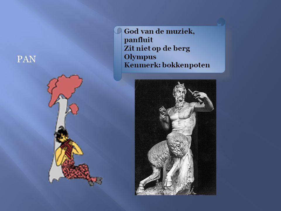 God van de muziek, panfluit Zit niet op de berg Olympus Kenmerk: bokkenpoten