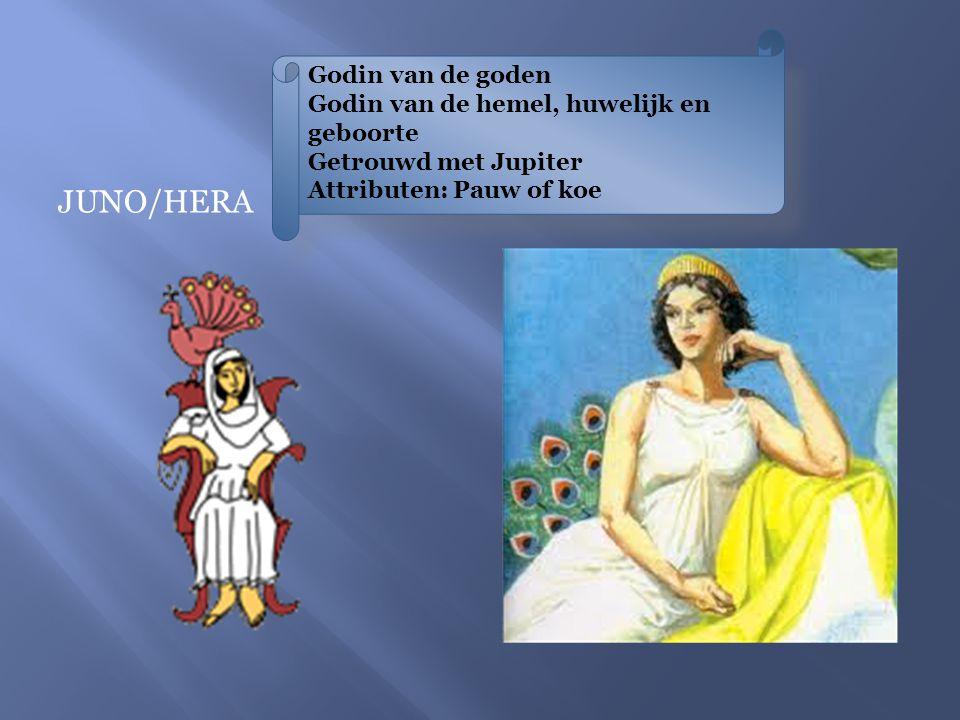 Godin van de goden Godin van de hemel, huwelijk en geboorte Getrouwd met Jupiter Attributen: Pauw of koe