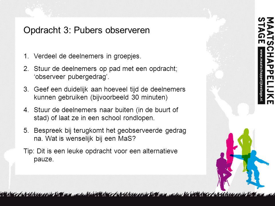 Opdracht 3: Pubers observeren