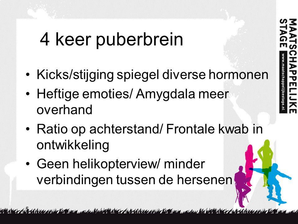4 keer puberbrein Kicks/stijging spiegel diverse hormonen