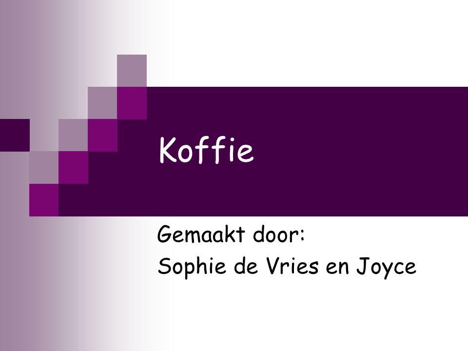 Gemaakt door: Sophie de Vries en Joyce