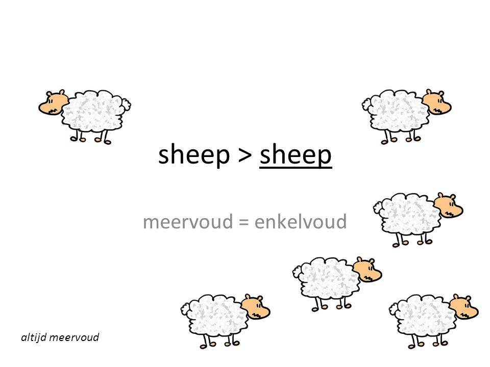 sheep > sheep meervoud = enkelvoud altijd meervoud