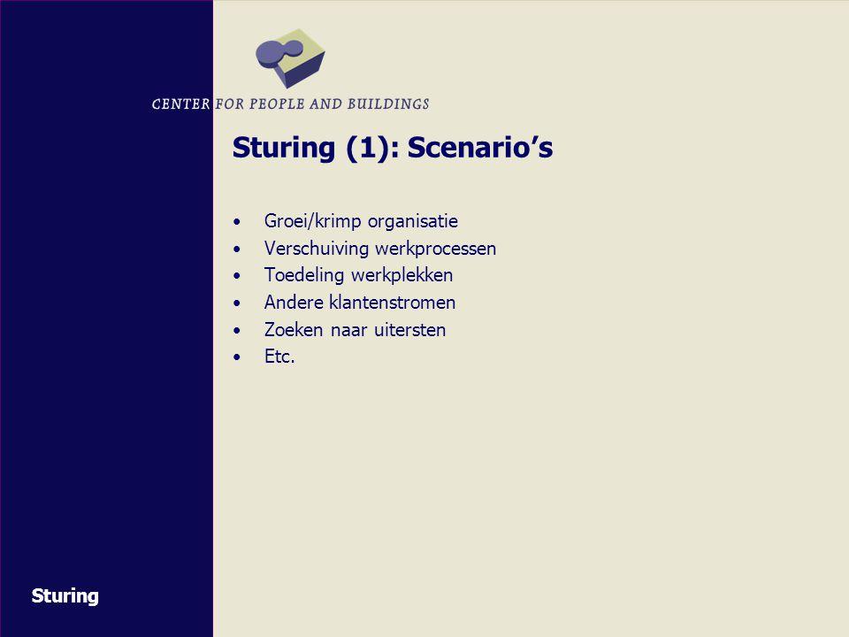 Sturing (1): Scenario's