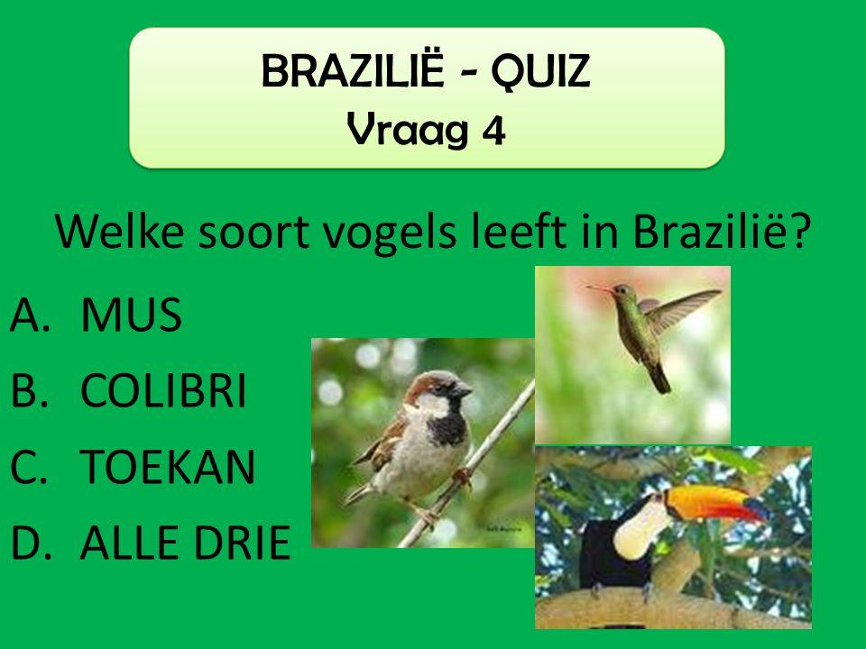 Welke soort vogels leeft in Brazilië