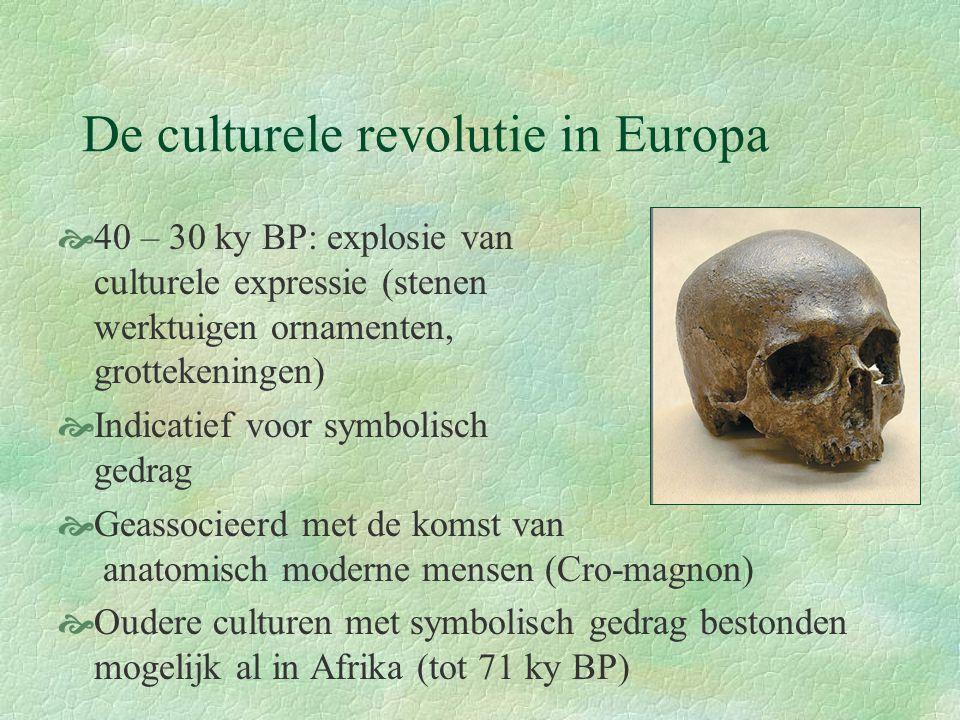 De culturele revolutie in Europa