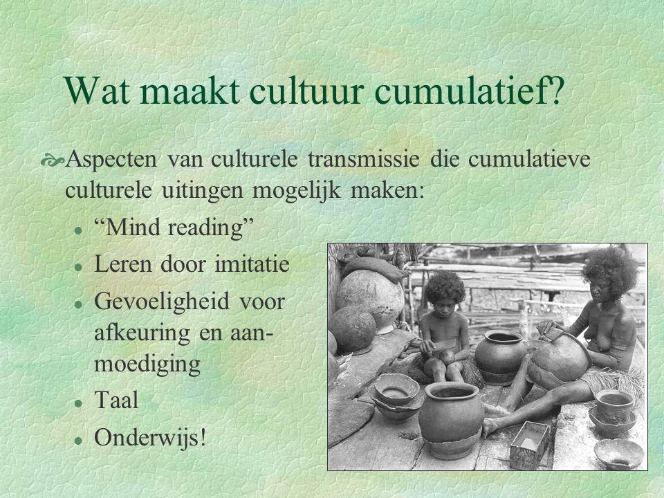 Wat maakt cultuur cumulatief