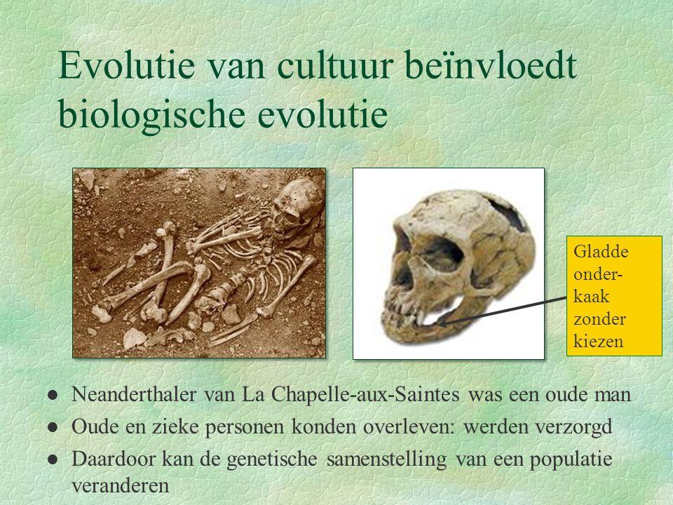 Evolutie van cultuur beïnvloedt biologische evolutie