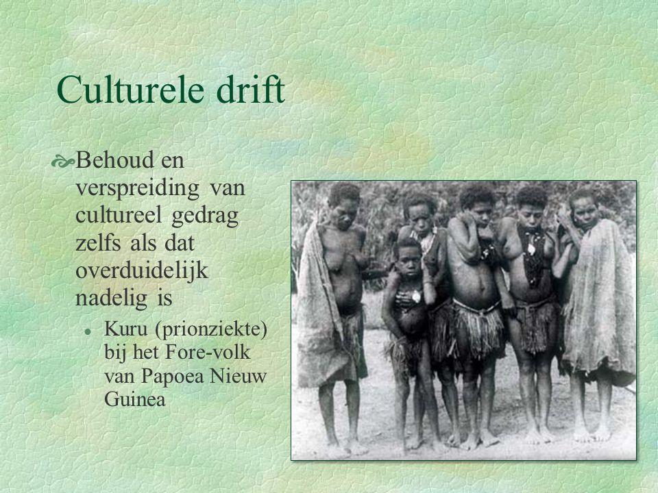 Culturele drift Behoud en verspreiding van cultureel gedrag zelfs als dat overduidelijk nadelig is.