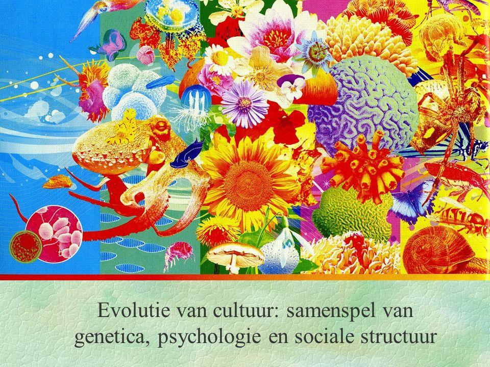 Evolutie van cultuur: samenspel van genetica, psychologie en sociale structuur