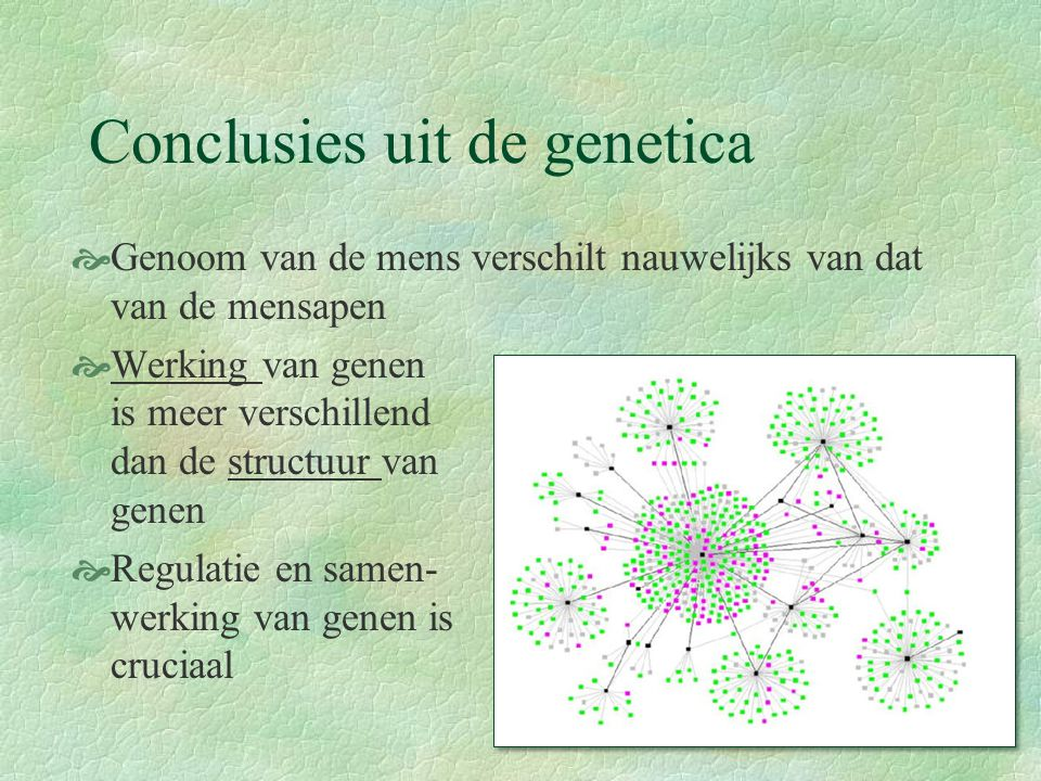 Conclusies uit de genetica