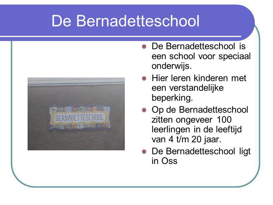 De Bernadetteschool De Bernadetteschool is een school voor speciaal onderwijs. Hier leren kinderen met een verstandelijke beperking.