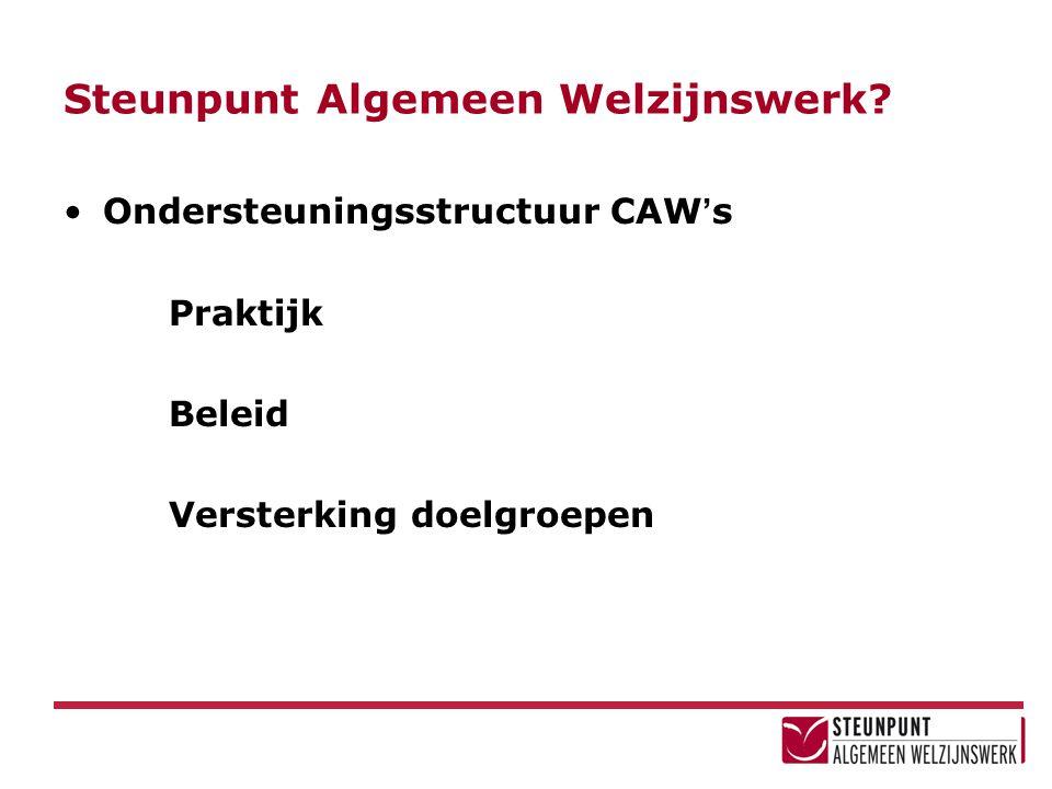Steunpunt Algemeen Welzijnswerk