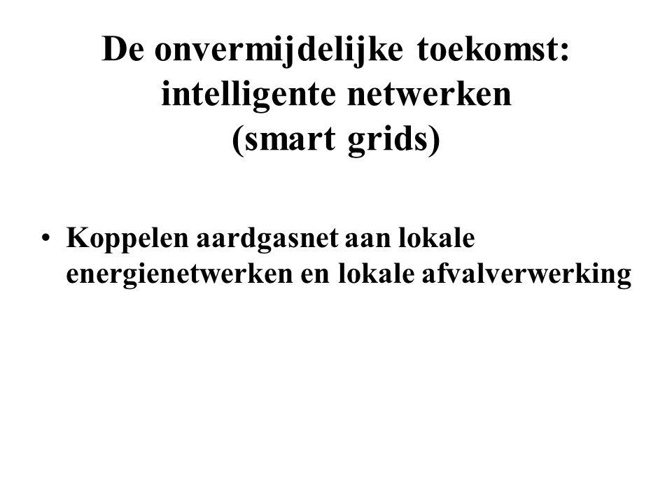 De onvermijdelijke toekomst: intelligente netwerken (smart grids)