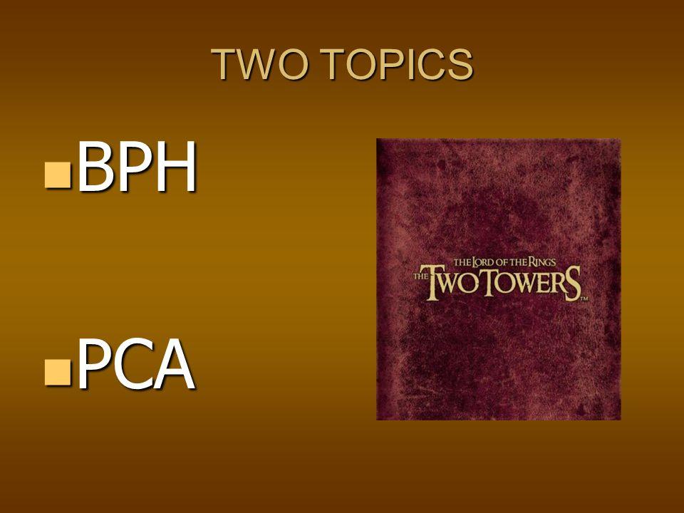 TWO TOPICS BPH PCA