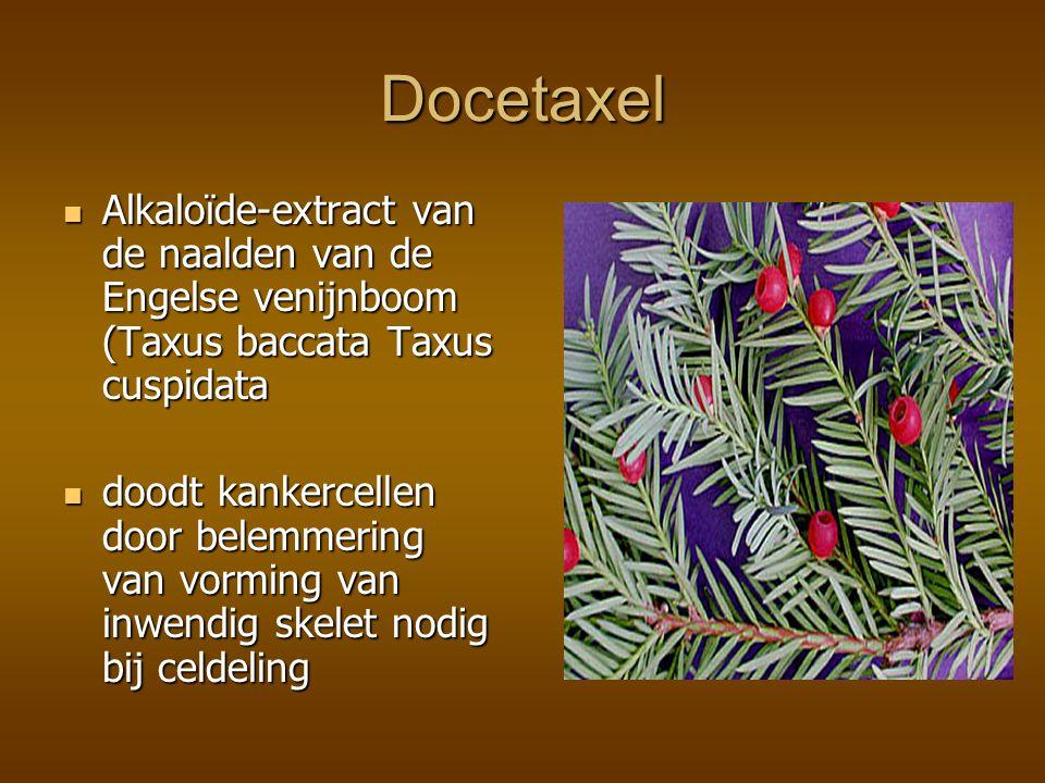 Docetaxel Alkaloïde-extract van de naalden van de Engelse venijnboom (Taxus baccata Taxus cuspidata.